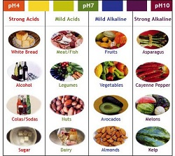 acid vs alkaline food chart
